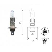 Lamp. H1 24v 70w