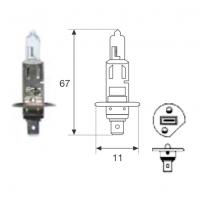 Lamp. H1 12v 55w