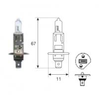 Lamp. H1 24v 70w Hd