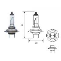 Lamp. H7 24v 70w Hd