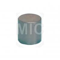 (0485) Rodillo Cilíndrico De Bomba De Aceite 7 X 7,0 Mm // Mercedes Benz Cx 16s-130/160/1650 // Oem N005402007200/ 9931670/